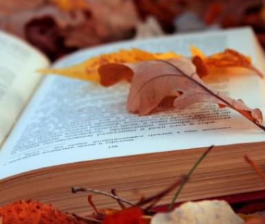 Libros que se adueñaran de tus días de otoño