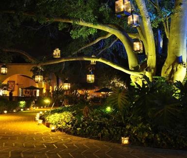 10 Hoteles en México que debes visitar al menos una vez en tu vida