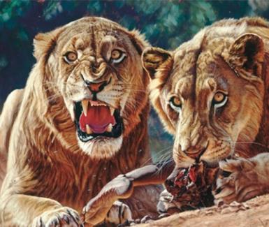 Los Devoradores de Hombres. Leones de Tsavo